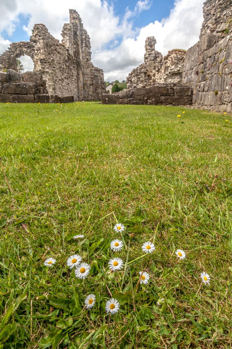 Sawley Abbey - WCF-3973.jpg