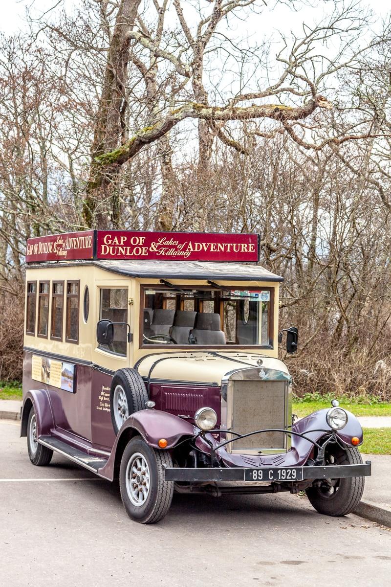 """Asquith """"Vintage"""" bus - WCF-8202.jpg"""