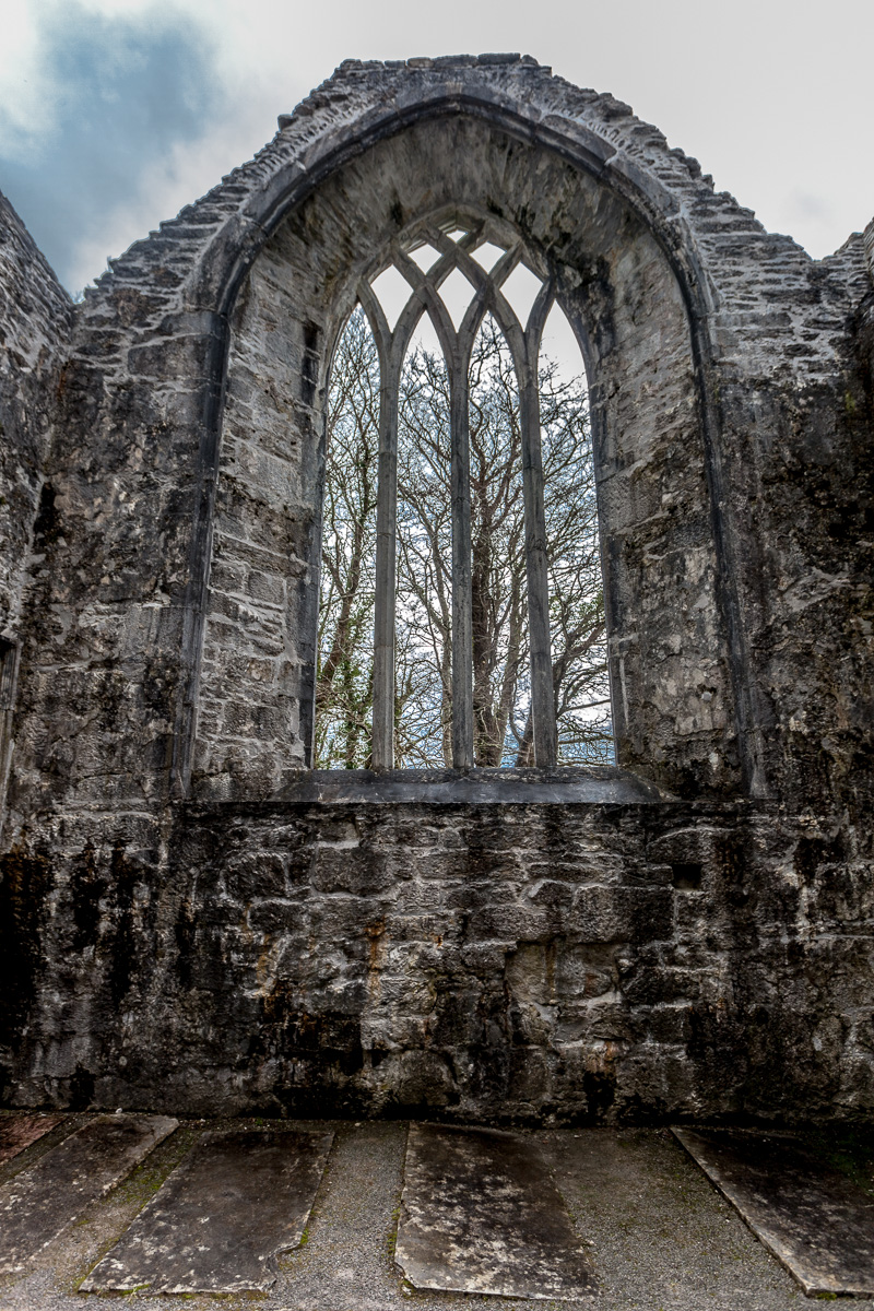Muckross Abbey - Killarney National Park - WCF-8274.jpg