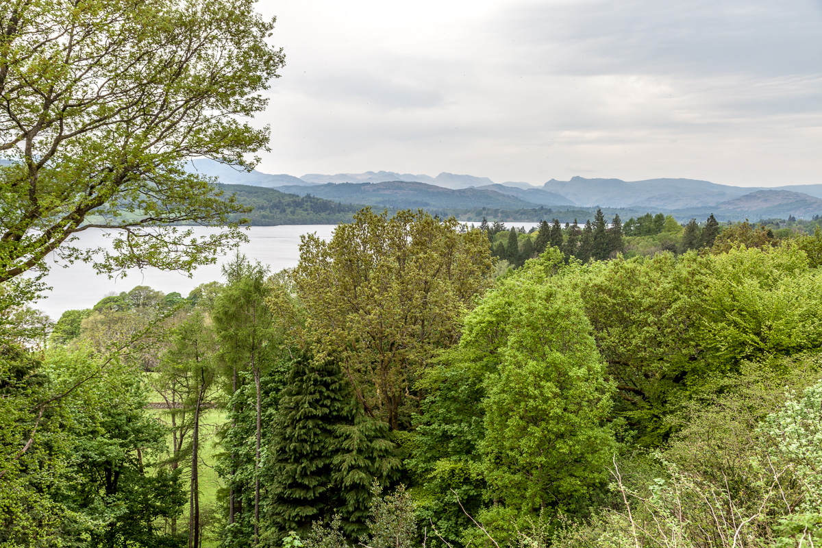 Windermere, the Lake District - WCF-2533.jpg