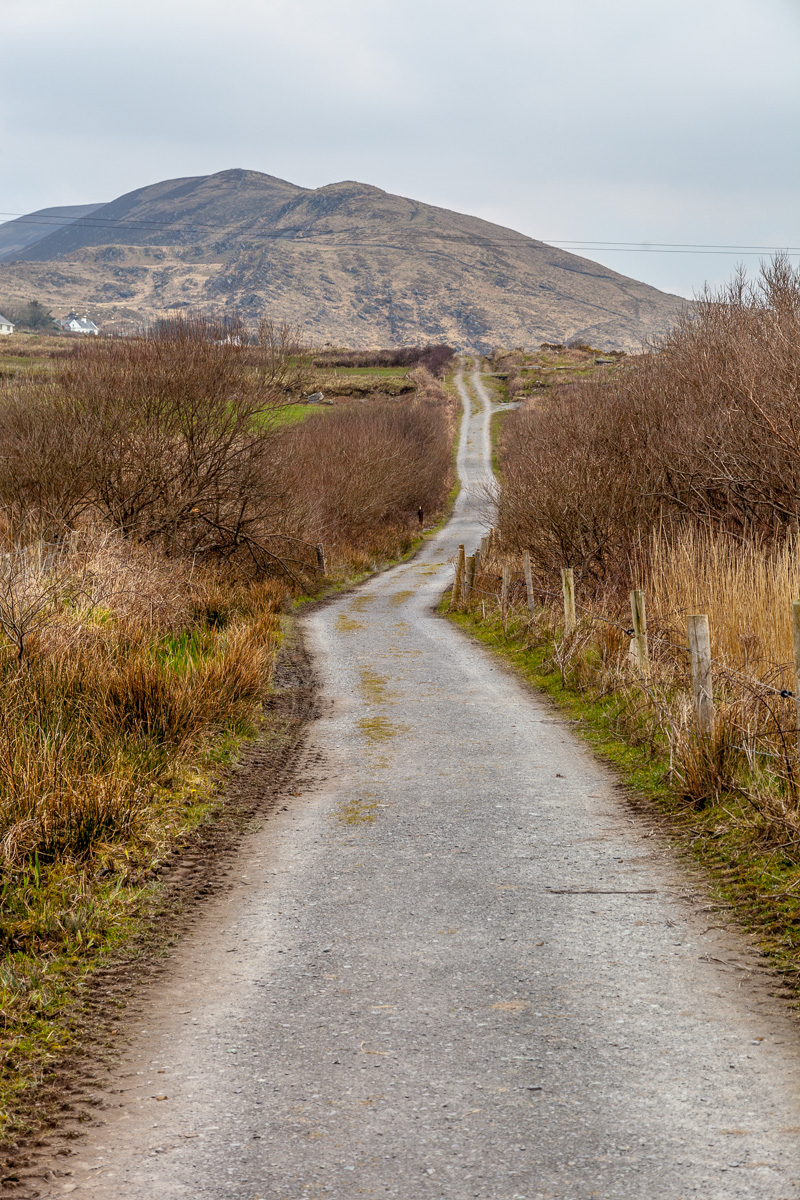 Near Cahersiveen, and the three fortifications - WCF-6882.jpg