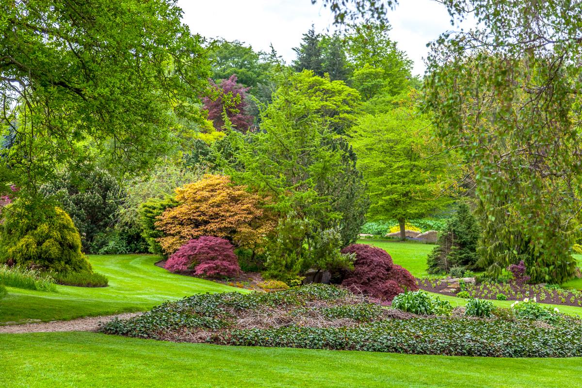 RHS Garden Harlow Carr - WCF-3935.jpg