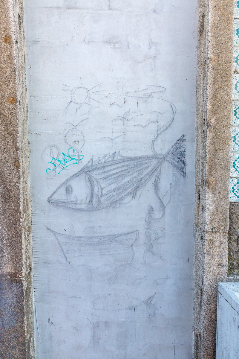 Some fishy street art - WCF-9531.jpg