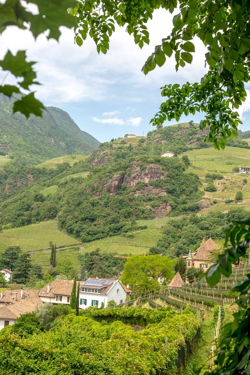 View from the Oswaldo Promenade. - WCF-5976.jpg