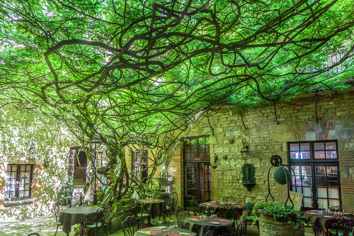 Wisteria covered patio of the Hostellerie du Vieux Cordes - WCF-2683.jpg
