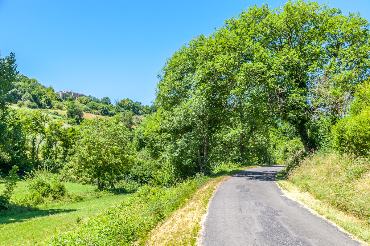 Along a road near Cordes-sur-Ciel - WCF-2735.jpg