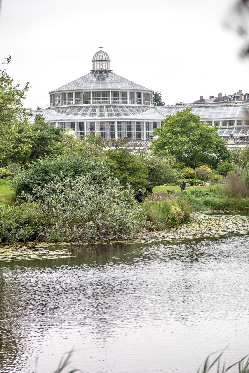 University of Copenhagen Botanical Garden - WCF-9759.jpg