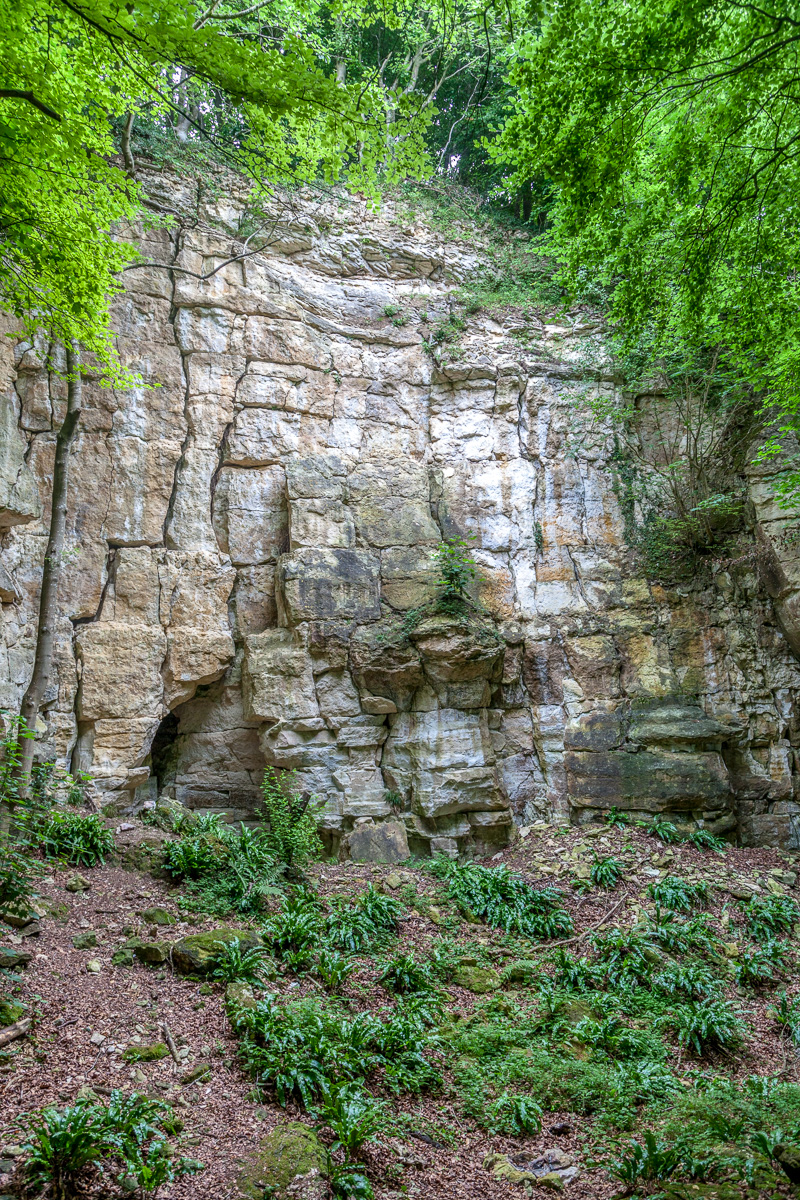 Limestone cliff face on the Cotswold Way - WCF-4793.jpg