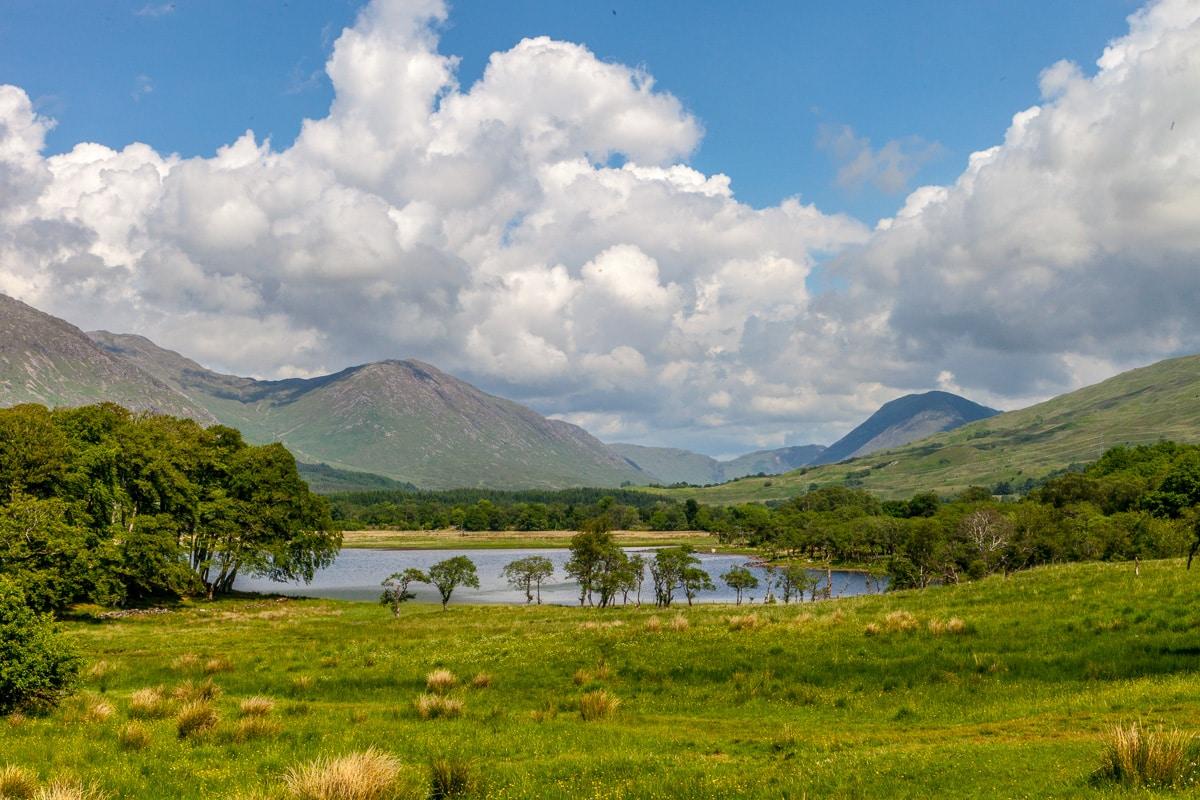 In the Scottish Gighlands - WCF-5750.jpg