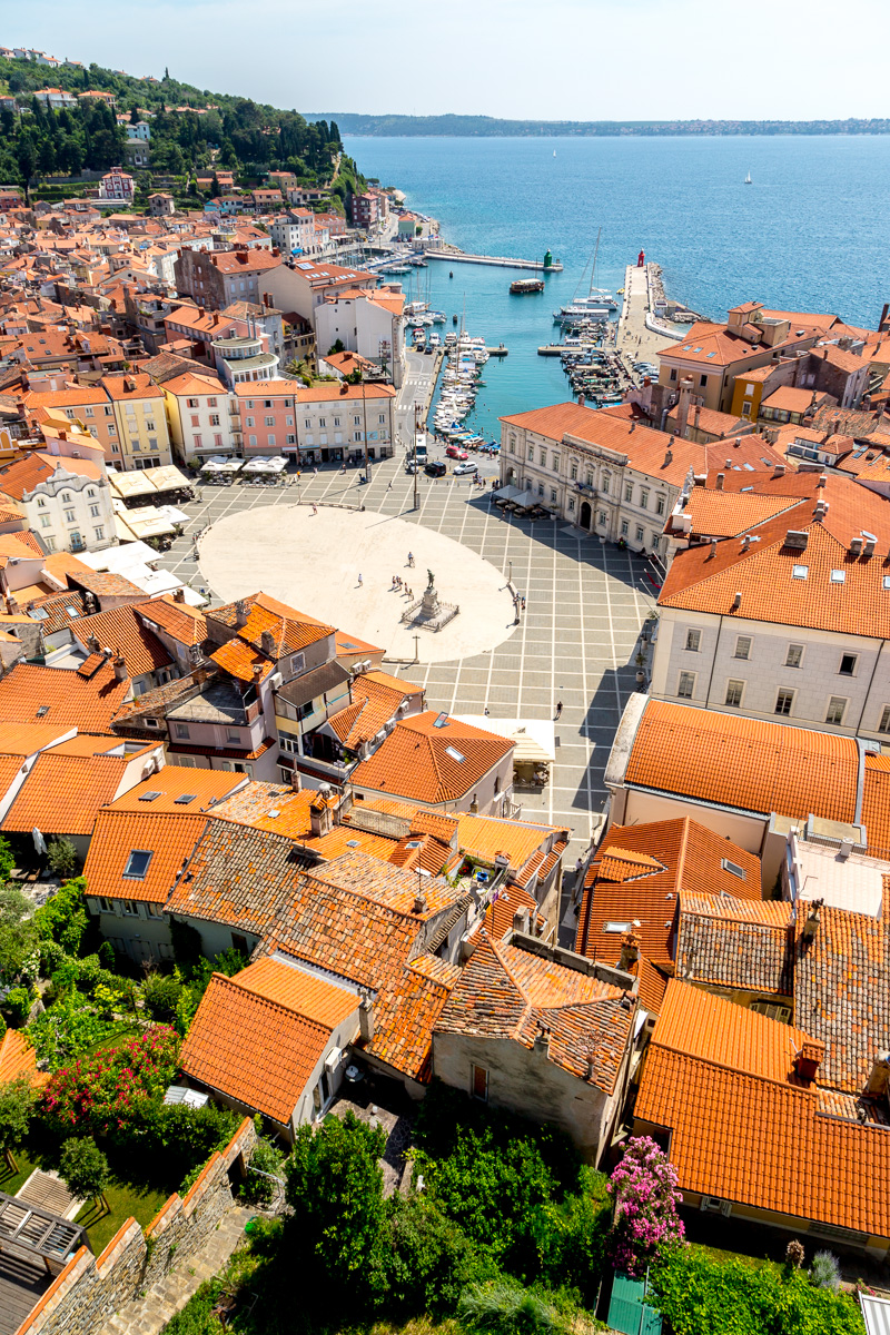 View of Piran from the bell tower next to St. George's Parish Church. - WCF-9447.jpg