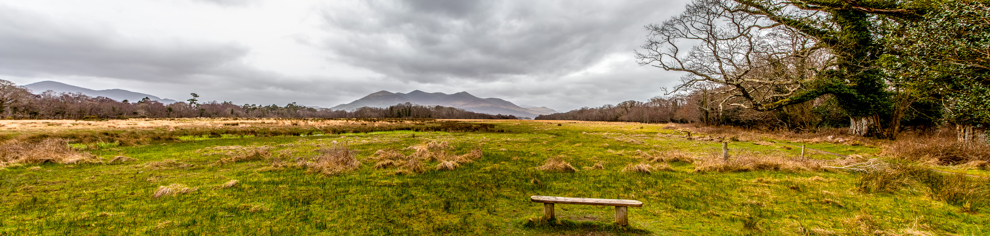 Panoramic view along our walk into Killarney through the National Park WCF-20.jpg