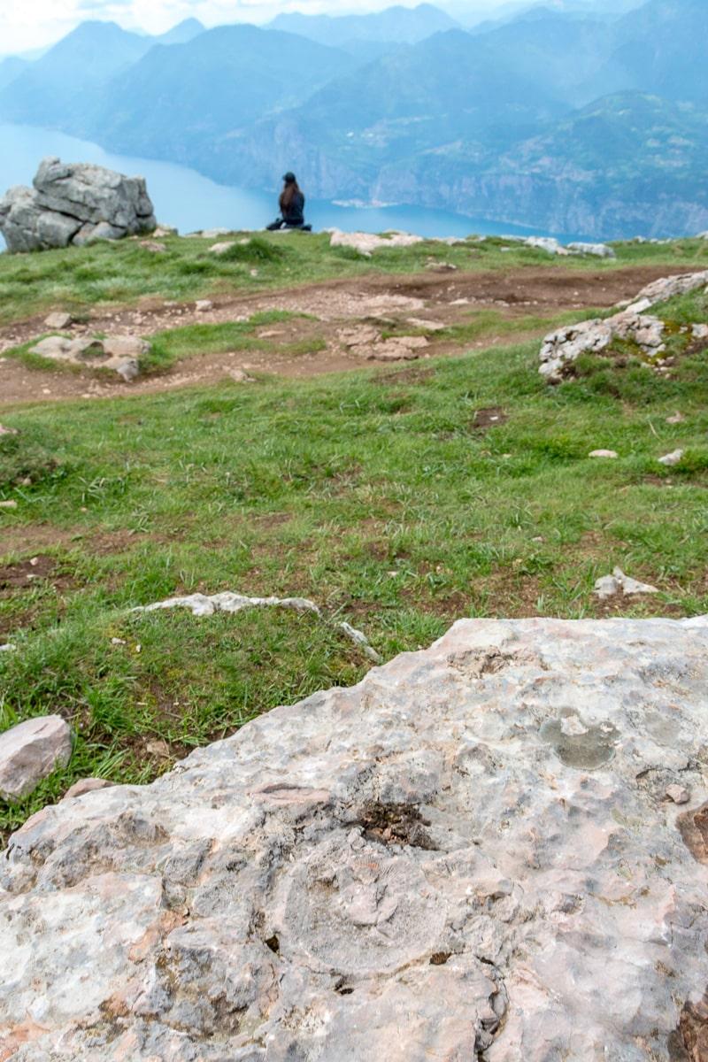 Ammenoid fossil atop Monte Baldo. - WCF-6279.jpg