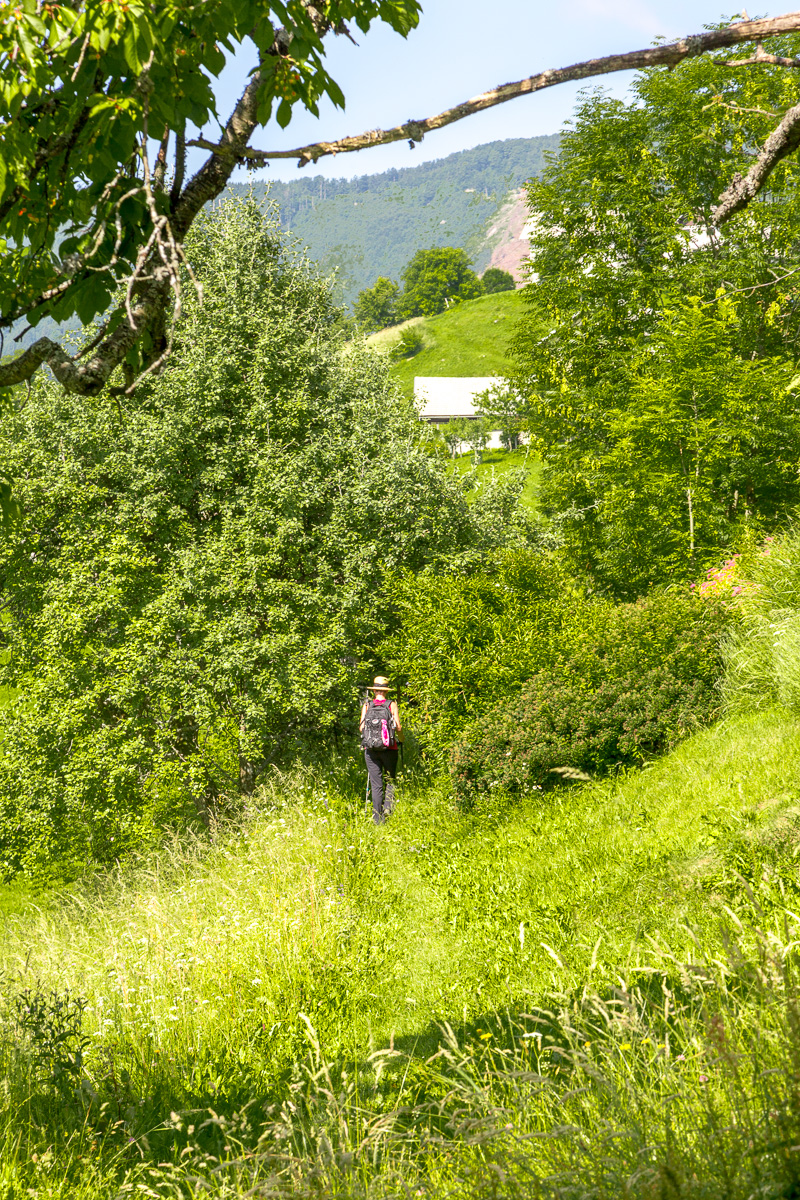 Walking In Slovenia. - WCF-9710.jpg