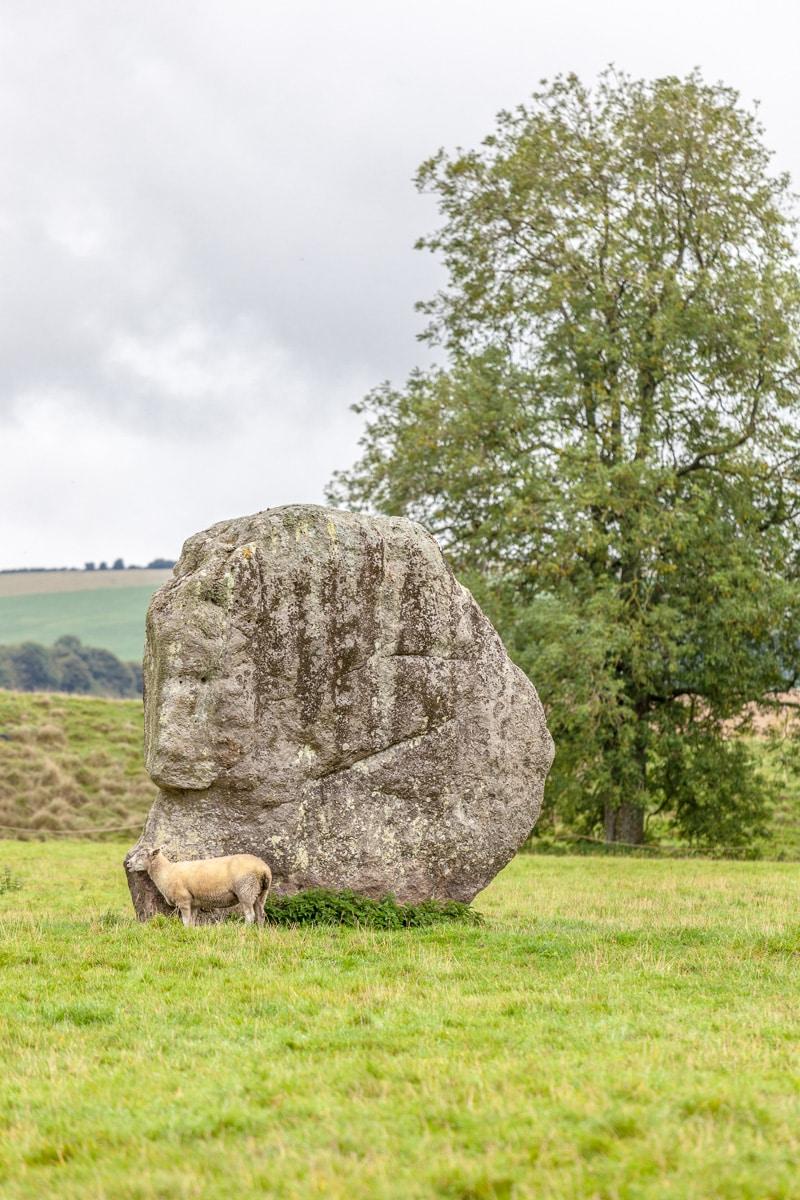 Avebury Stone Circle - WCF-0048.jpg