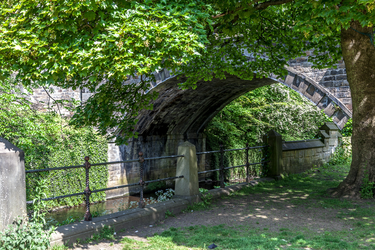 Along the Water of Leith - WCF-5370.jpg