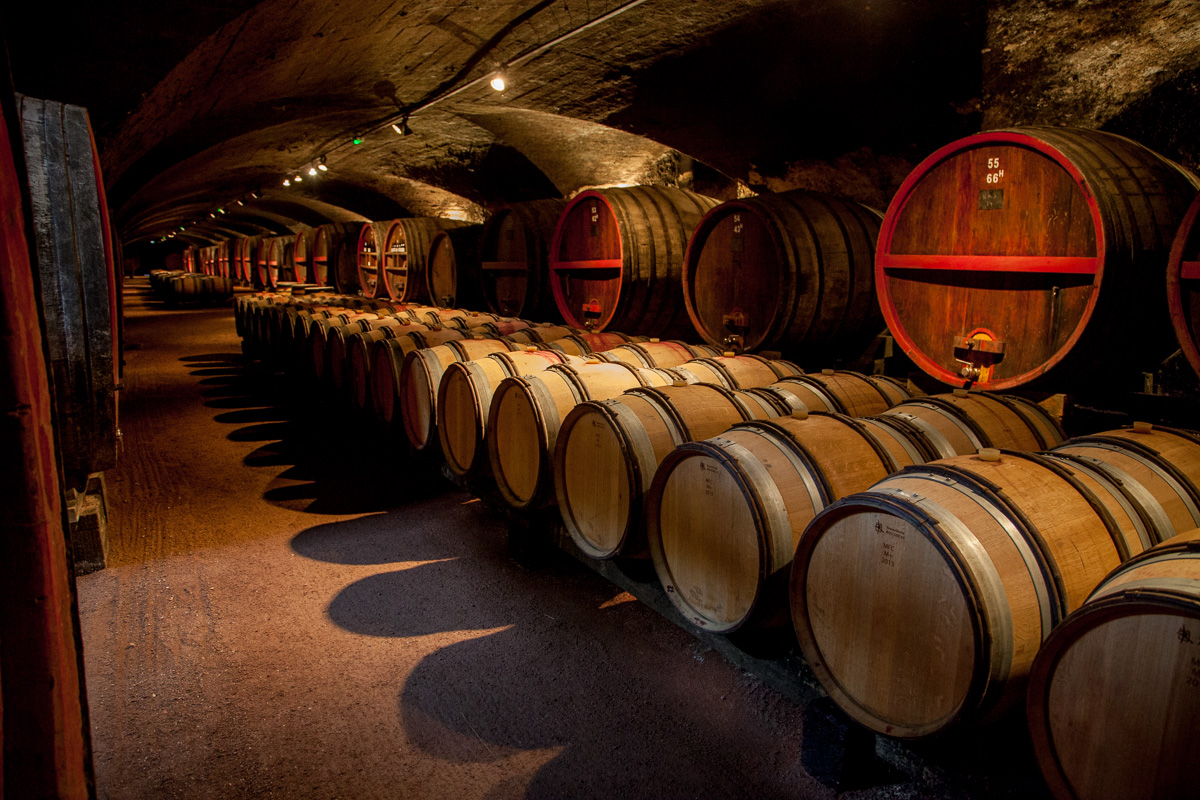Wine – a Tale of Three Tours