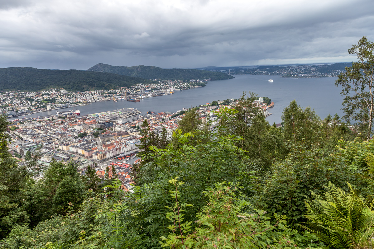 Mountains, Museums, and Mostraumen