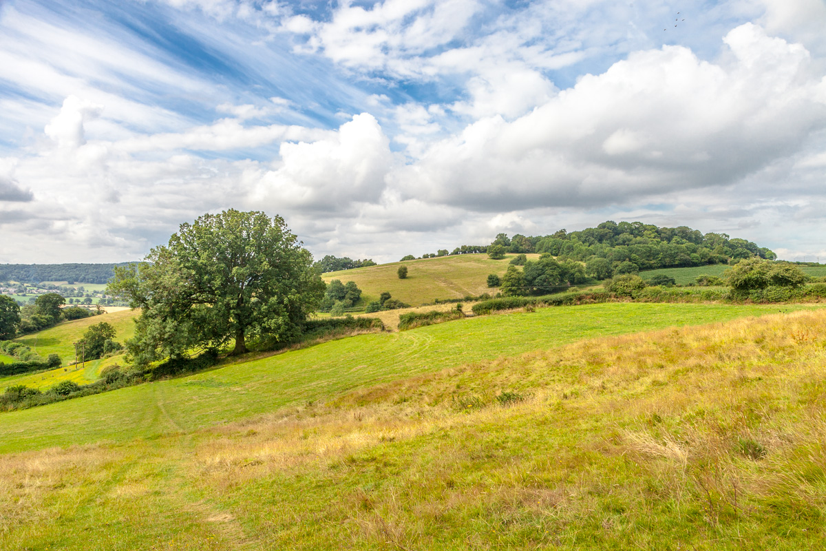The Cotswold Way – Selsley to Painswick
