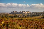 Carcassonne - The Medieval Fortress