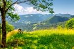 Pohod v Slovenijo - Walking in Slovenia